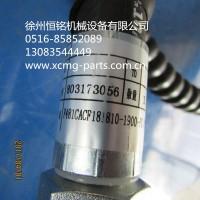 供应徐工XE80挖机配件803173056   F481CACF181810-1900-PG 软管总成